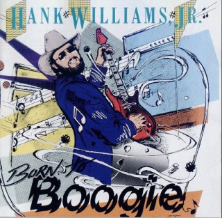 hank williams jr - born to boogie