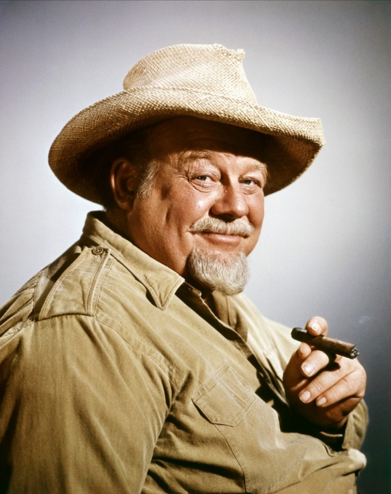 Burl Ives My Kind Of Country